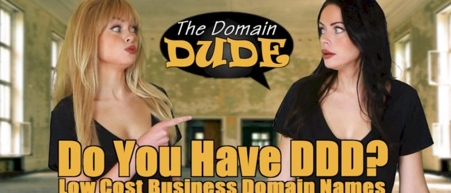 The Domain Dude | Do You Have DDD? | thedomaindude.com | (image)